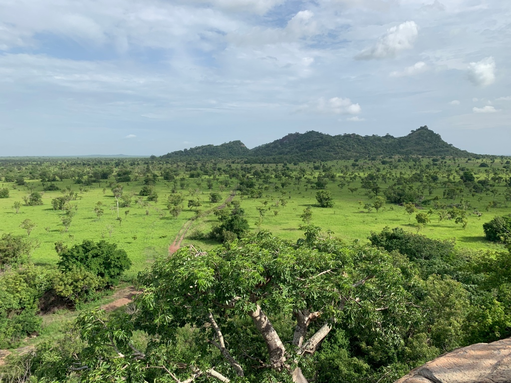 A view of the savannah plains and trees of the Shai Hills Resource Reserve in Accra Ghana